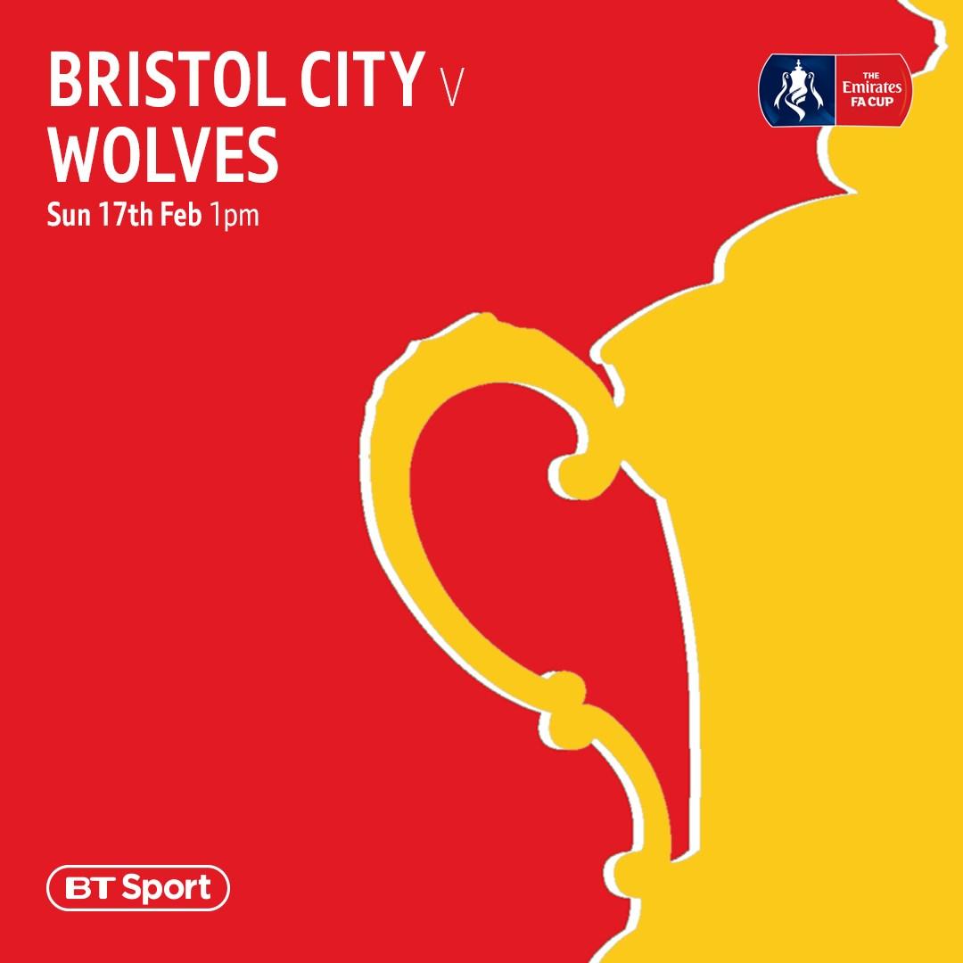 Bristol City v Wolves (FA Cup)