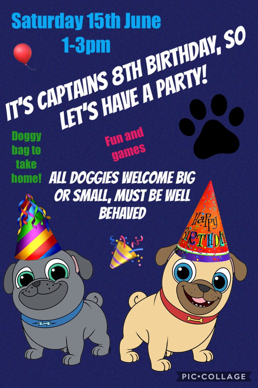 Captain the Pugs 8th Birthday party