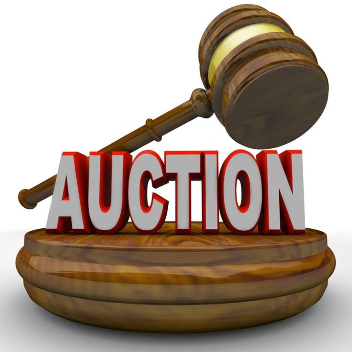 Auction Night for Donna Louise