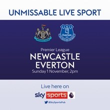 Newcastle United v Everton (Premier League)