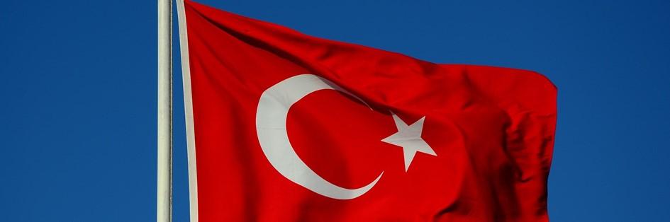 Turkey v Iceland (Euro 2020)