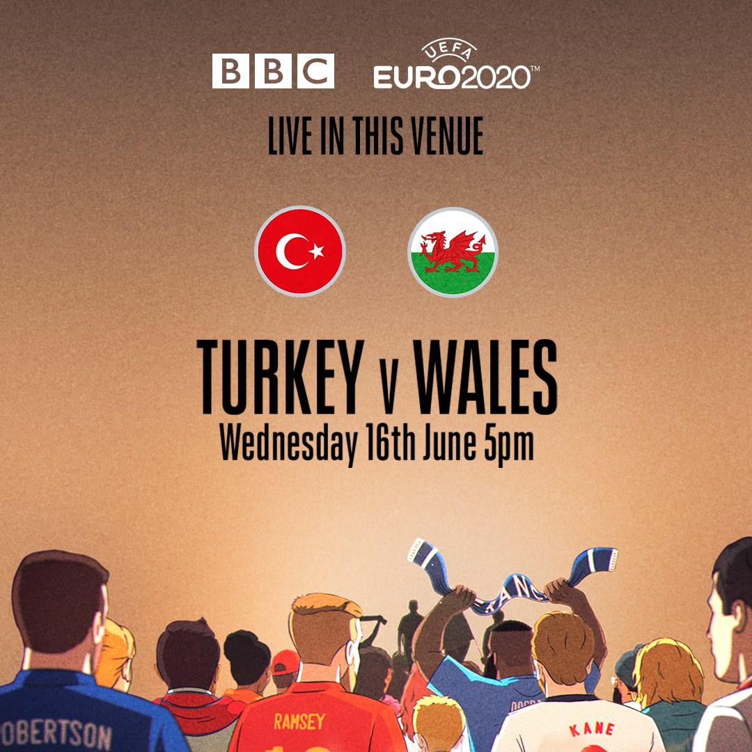 Turkey v Wales (Euro 2020)