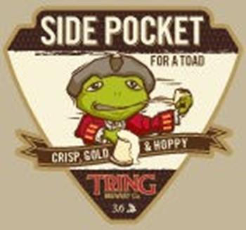 Side Pocket for a Toad