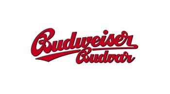 Budvar Original